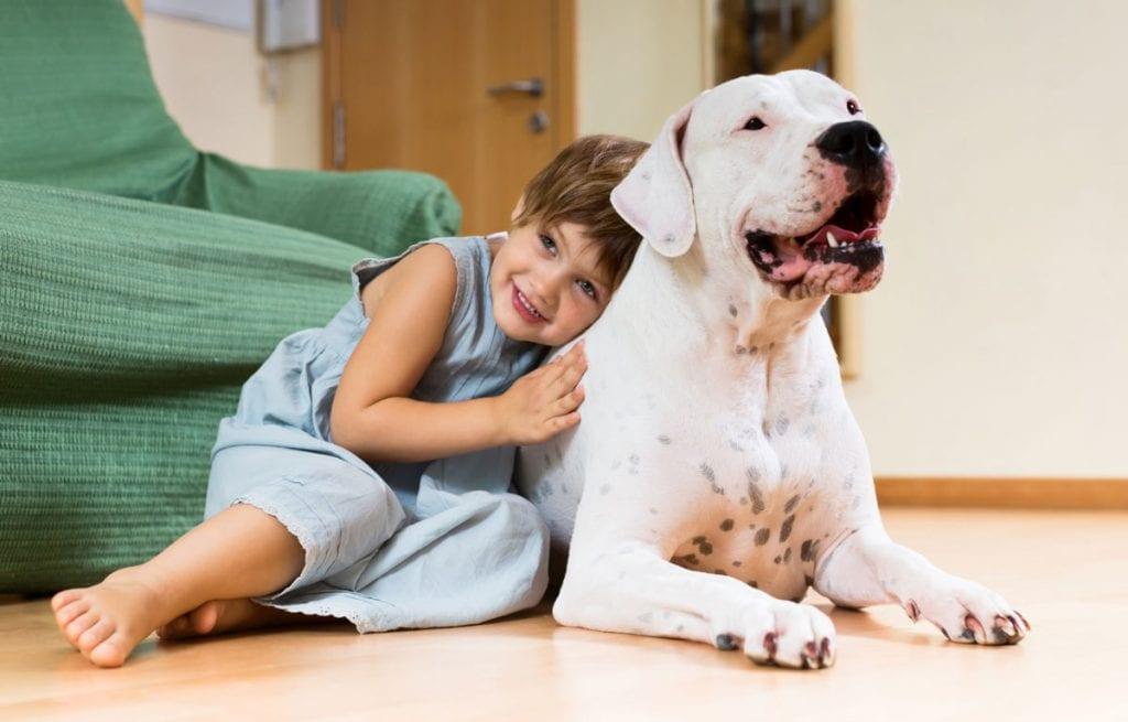 Um pet na pandemia: como os animais de estimação podem ajudar as crianças; Menina está sentada no chão com a cabeça sobre dorso de cachorro branco grande que está deitado no chão