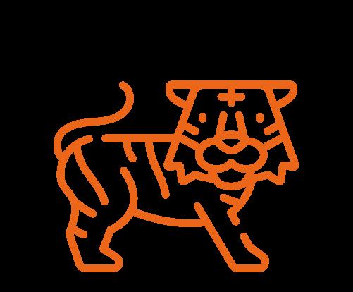 Ilustração de um tigre