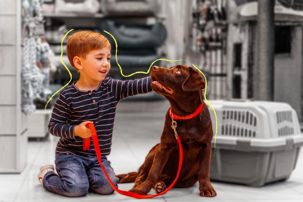 Há uma idade certa para dar um pet para as crianças?; menino segura coleira de cachorro e faz carinho no seu focinho