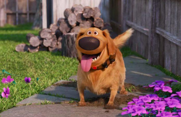 'Dug', o simpático cãodo filme 'Up – Altas Aventuras', ganha série própria