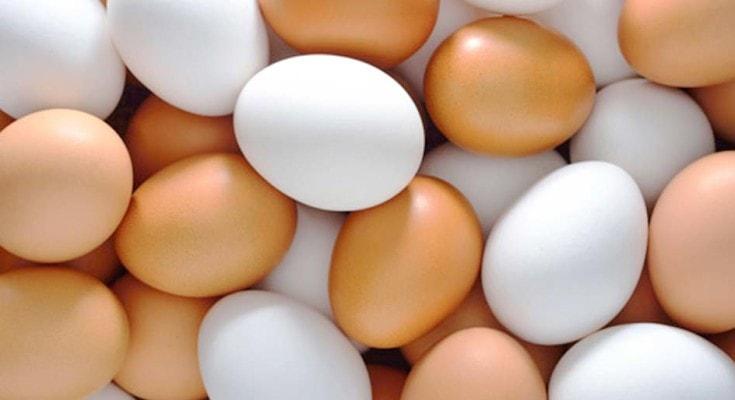 13 alimentos superpoderosos para a saúde das crianças; ovos brancos e marrons